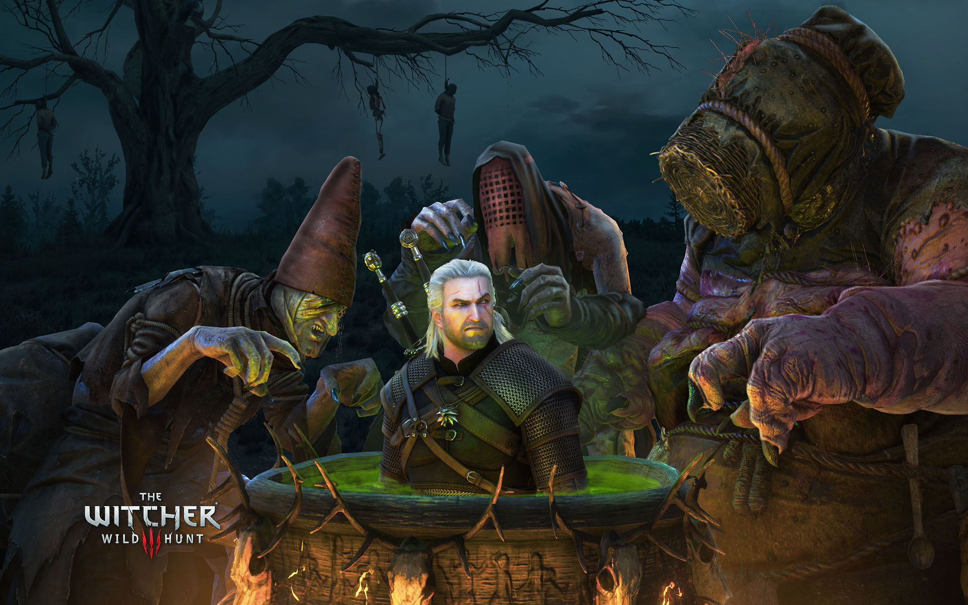 the witcher - photo #6