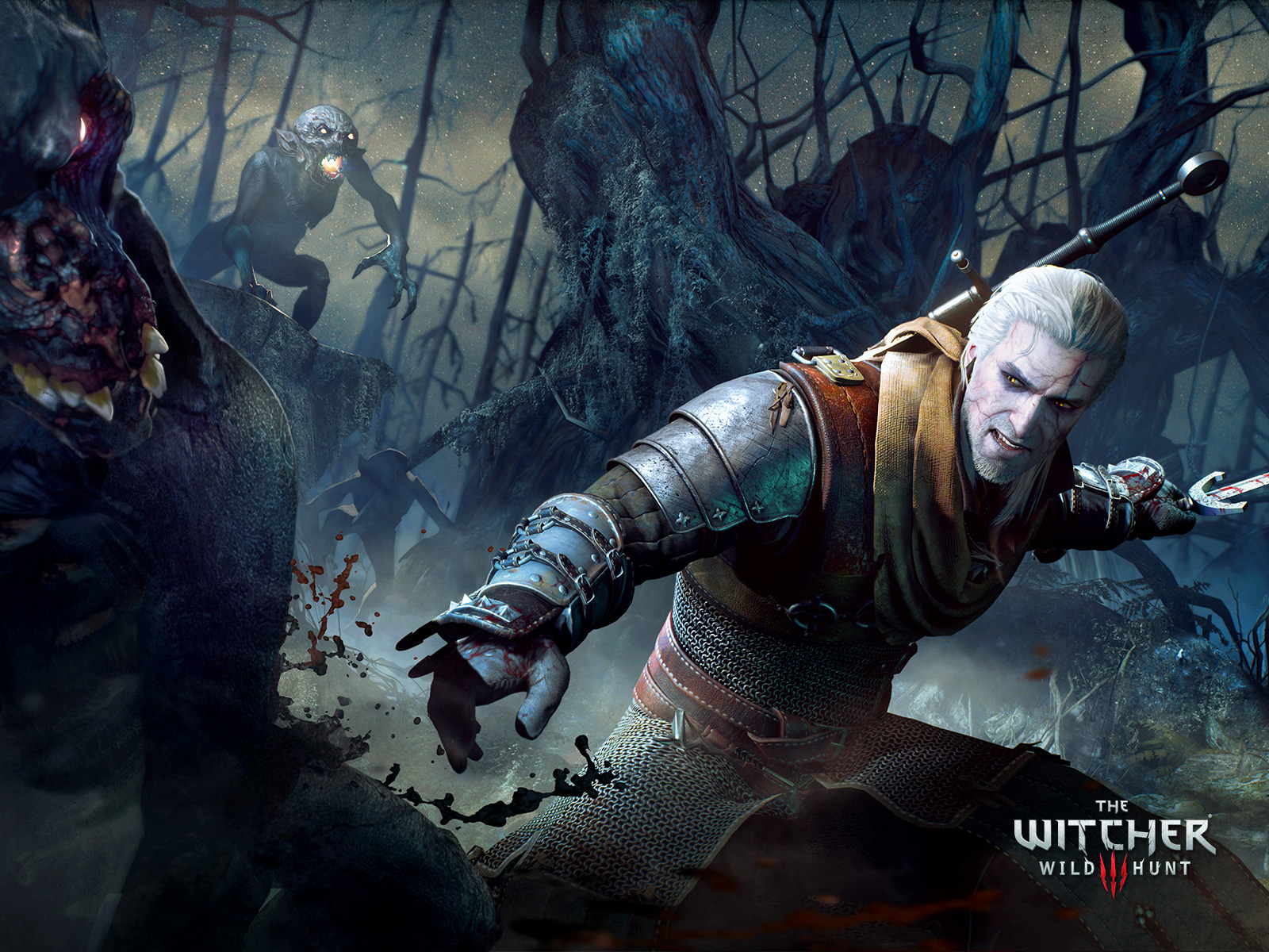 the witcher - photo #12